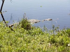 U Florida Visit 143