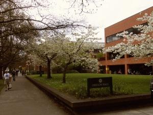 University of Oregon Trip 019