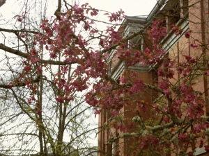 University of Oregon Trip 023