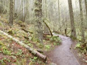 The muddy, muddy trail.