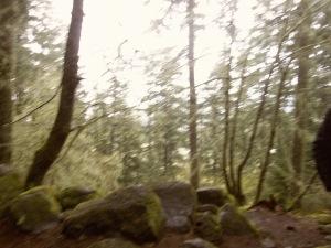 University of Oregon Trip 054