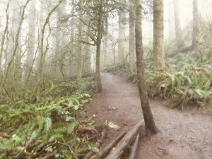 University of Oregon Trip 063