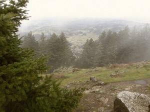 University of Oregon Trip 099