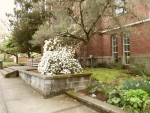 University of Oregon Trip 108