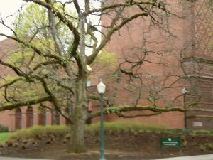 University of Oregon Trip 117