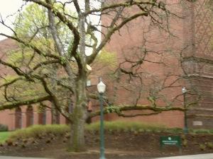 University of Oregon Trip 117